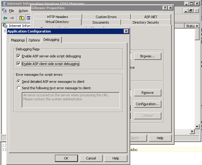 Enable debugging Internet Information Services Windows Server 2003
